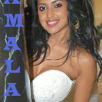 Amala Paul hand job in hot low neck blouse nude cleavage show