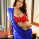 Big boobs Sneha in red bra nude deep navel in saree