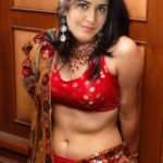 Raashi Khanna red hot blouse nude navel in xxx saree HQ Gallery