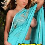 Tamanna hot saree no blouse and bra nude boobs show